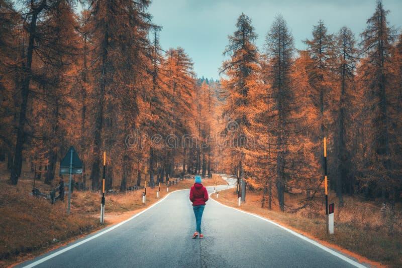 Ung kvinna på vägen i höstskog på solnedgången royaltyfria foton