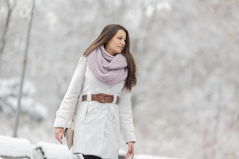 Ung kvinna på vintern arkivbild