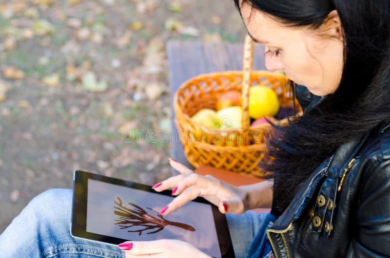 Ung kvinna som använder en tablet royaltyfria foton