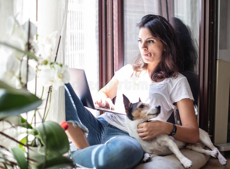 Ung kvinna som arbetar på en bärbar dator med hennes hund arkivfoto