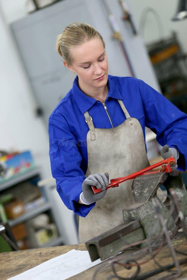 Ung kvinna som arbetar på järn royaltyfri bild
