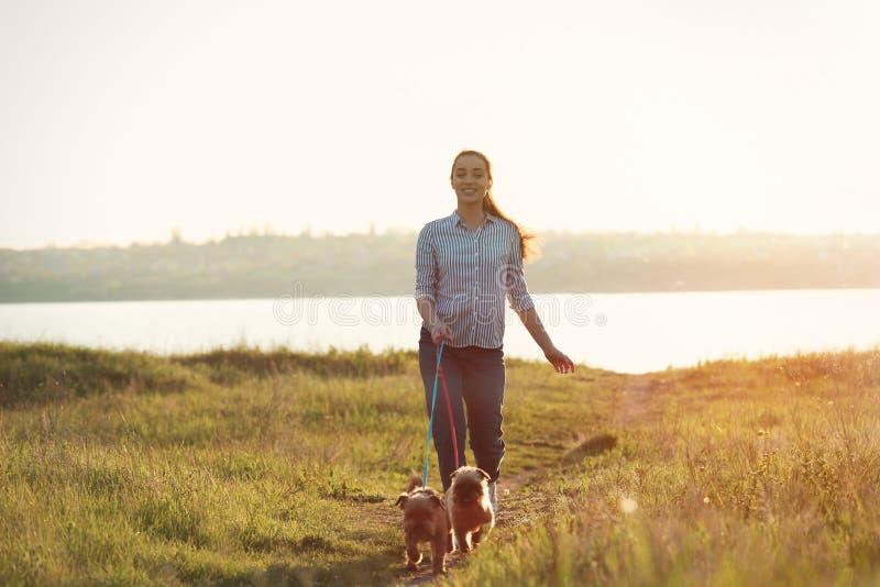 Ung kvinna som går hennes förtjusande Bryssel Griffon hundkapplöpning arkivbild