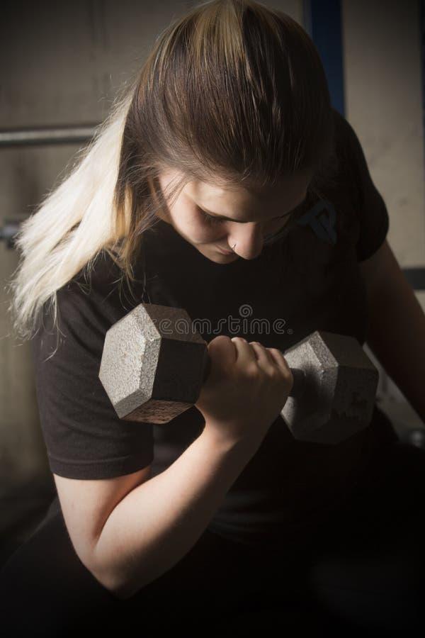 Ung kvinna som gör krullning med en hantel i Connecticut arkivbilder