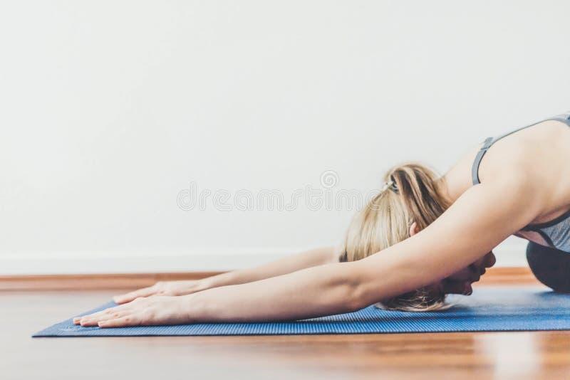 Ung kvinna som gör yogagenomkörare royaltyfri fotografi
