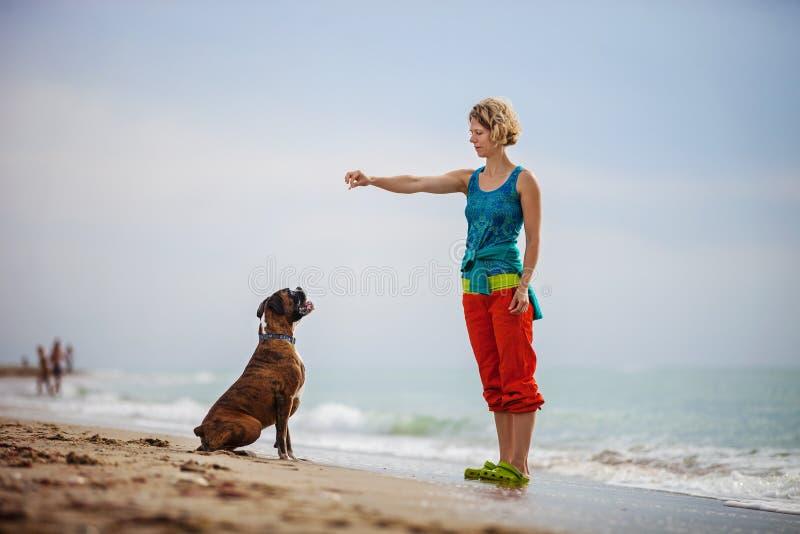 Ung kvinna som ger kommandon till boxarehunden, medan gå arkivfoto