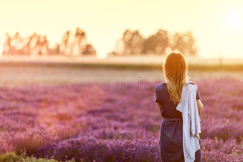 Ung kvinna som kopplar av att se på lavendelfält på solnedgången arkivfoto