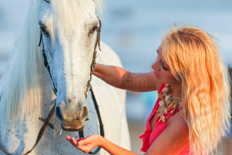 Ung kvinna som matar en häst royaltyfri foto