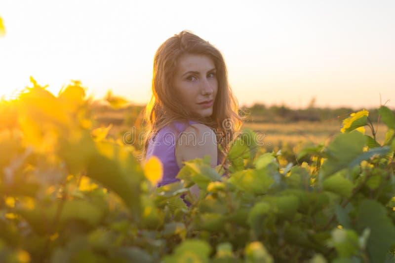 Ung kvinna som poserar i sommarfält fotografering för bildbyråer