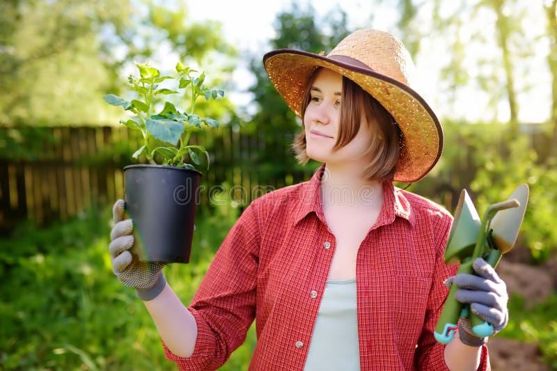 Ung kvinna som rymmer att arbeta i trädgården hjälpmedel och plantan i plast- krukor på den inhemska trädgården på den soliga dag royaltyfri fotografi