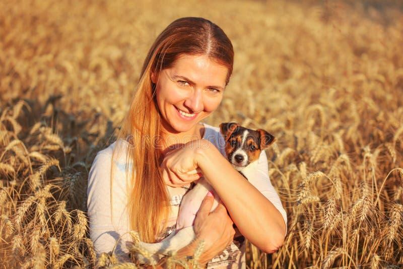 Ung kvinna som rymmer den Jack Russell terriervalpen på hennes händer, båda av dem som ler, solnedgång tänt vetefält i bakgrund arkivfoton