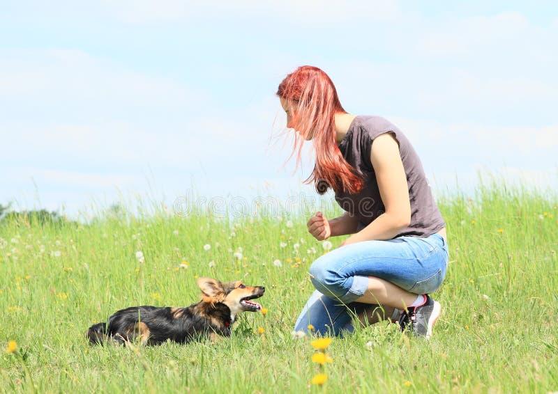 Ung kvinna som spelar med den svarta och bruna päls- hunden arkivfoto