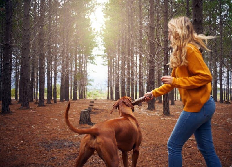Ung kvinna som spelar med hennes hund i skogen royaltyfri foto