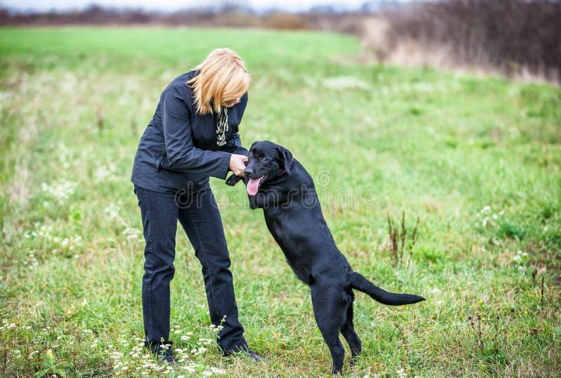 Ung kvinna som spelar med hunden arkivbild
