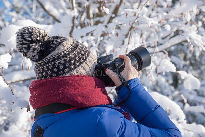 Ung kvinna som tar foto med en kamera i den vintriga skogen royaltyfria foton