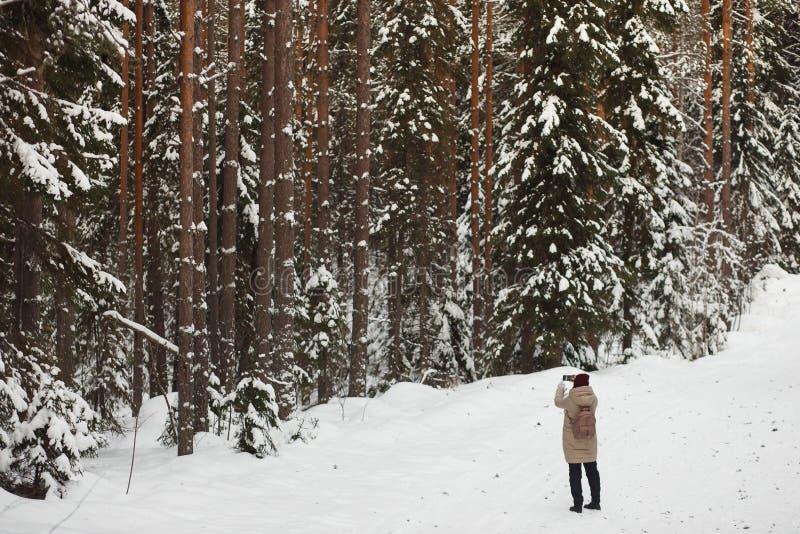 Ung kvinna som tar fotoet vid telefonen i för dold snöig väder vinterpinjeskog för snö Stort sörjer vinter för snow för pojkeferi arkivfoton