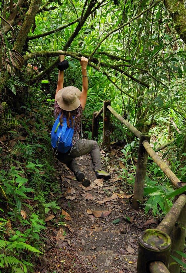 Ung kvinna som tycker om en bana i djungeln i den Cordiliera centralen royaltyfri bild