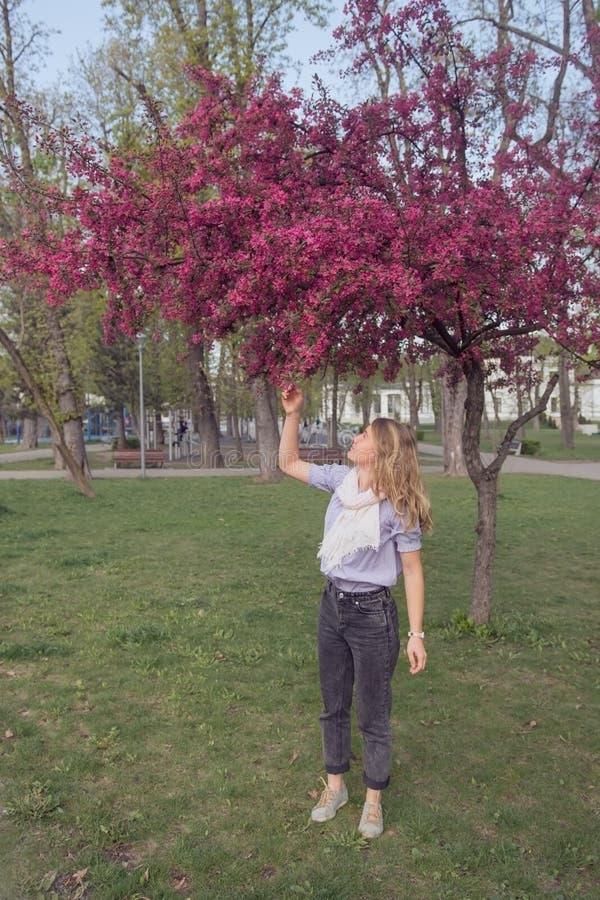 Ung kvinna som tycker om vårblommor av blomningen för äppleträd arkivbild