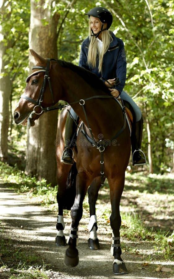 Ung kvinnahästridning i skogen royaltyfri foto