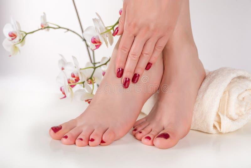 Ung kvinnlig fot med pedikyren och handen för vinfärg på ben på handduken arkivfoto