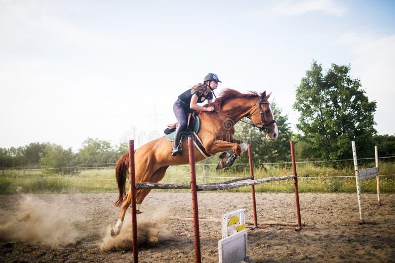 Ung kvinnlig jockey på hästen som hoppar över häck royaltyfri foto