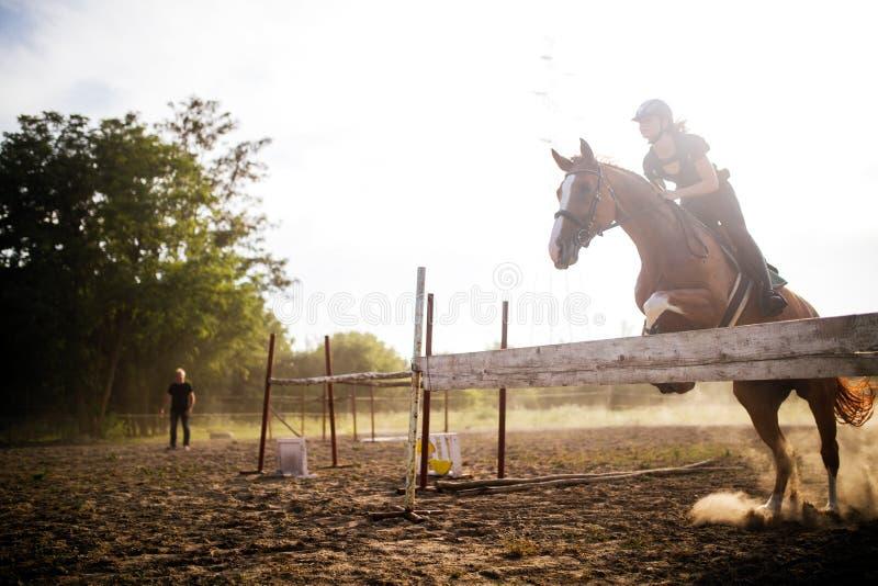 Ung kvinnlig jockey på hästen som hoppar över häck royaltyfria bilder