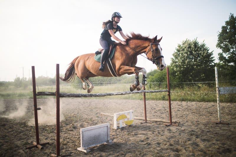 Ung kvinnlig jockey på hästen som hoppar över häck royaltyfri fotografi