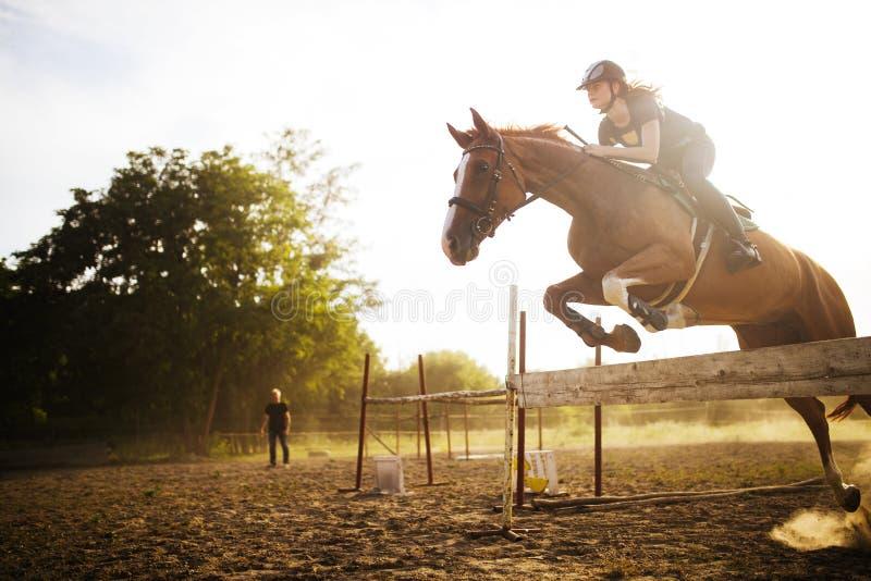 Ung kvinnlig jockey på hästen som hoppar över häck arkivbilder
