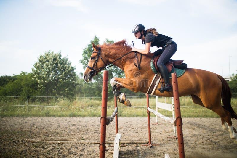 Ung kvinnlig jockey på hästen som hoppar över häck arkivbild