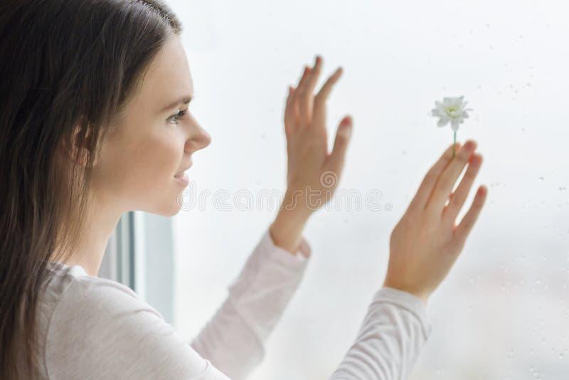 Ung le kvinna med kamomillen, bakgrundsfönster med regndroppar, naturlig skönhet för växt- dermatologi arkivfoton