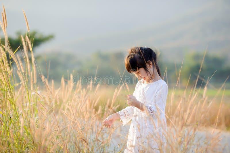 Ung liten asiatisk flicka arkivbild