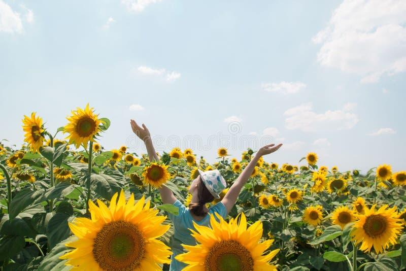 Ung lycklig kvinna i solrosfält som tycker om sommar arkivbilder