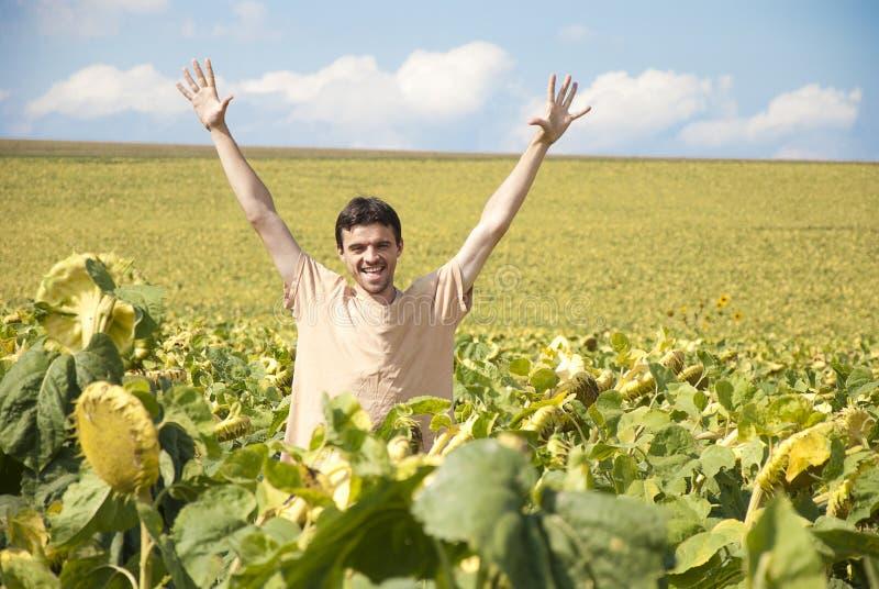 Ung lycklig man i ett solrosfält royaltyfri fotografi
