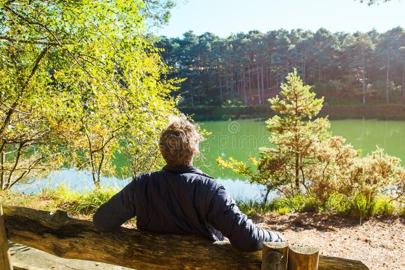 Ung man för tillbaka sikt som sitter och kopplar av på bänken nära skogsjön under solig dag utomhus- livsstil Stillhet och enhet royaltyfri foto