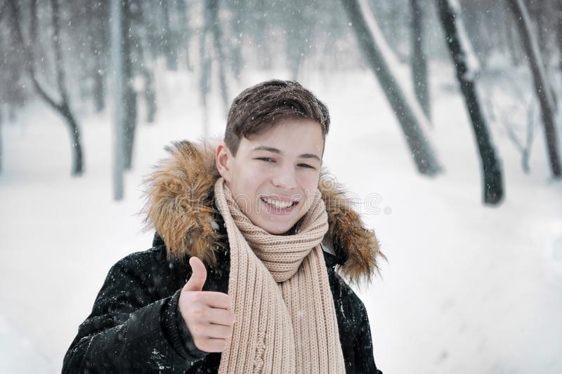 Ung man i huv i parkera i vinter royaltyfri foto
