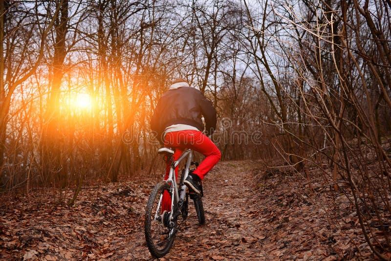 Ung man med ryggsäckridningcykeln på bergvägen i skogen royaltyfria foton