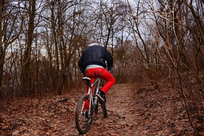 Ung man med ryggsäckridningcykeln på bergvägen i skogen royaltyfri foto