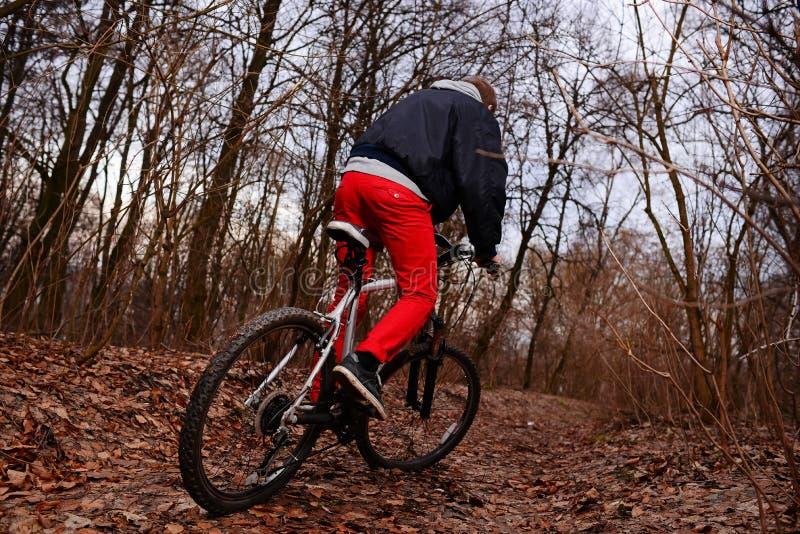 Ung man med ryggsäckridningcykeln på bergvägen i skogen royaltyfria bilder