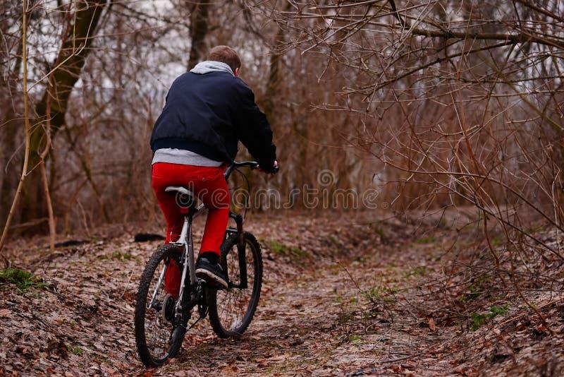 Ung man med ryggsäckridningcykeln på bergvägen i skogen arkivbild