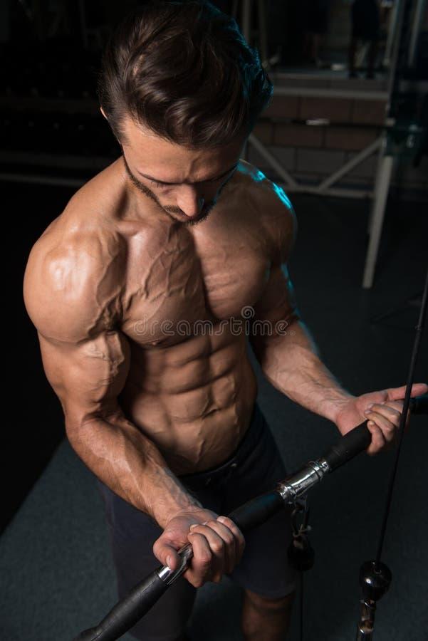 Ung man som övar biceps i idrottshallen arkivbilder