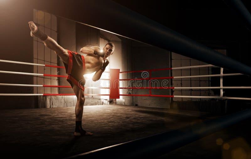 Ung man som kickboxing i arenan royaltyfri fotografi