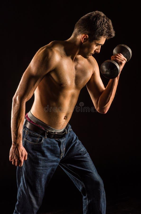 Ung man som lyfter Dumbell för att öva biceps - hantelkoncentrationskrullning arkivfoto