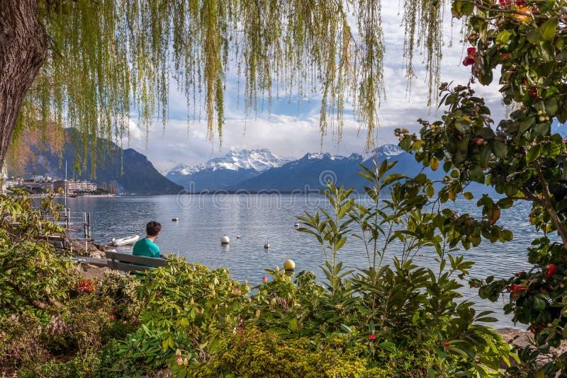 Ung man som tycker om med spektakulär sikt på fjällängbergen och Genève sjön fotografering för bildbyråer