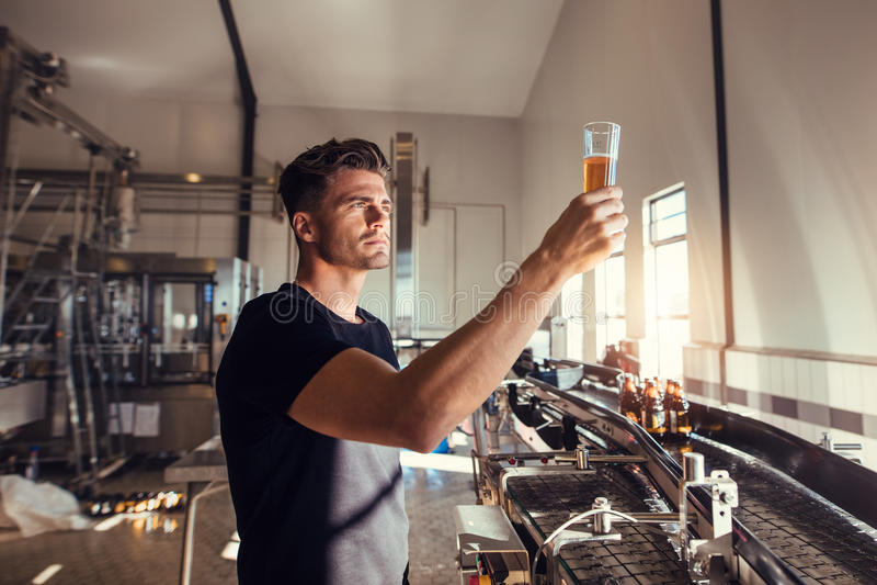 Ung man som undersöker kvaliteten av hantverköl på bryggeriet royaltyfri foto
