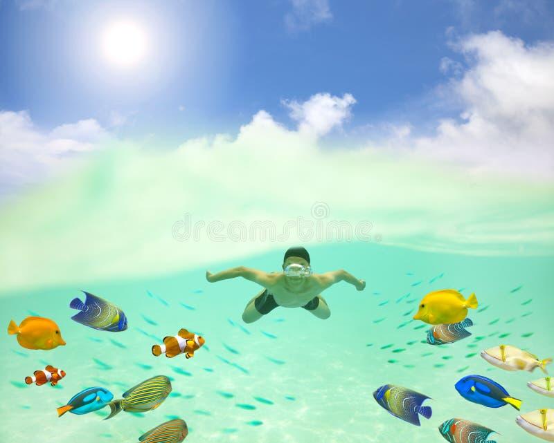 ung man som undersea simmar med färgrika fiskar och bubbl fotografering för bildbyråer