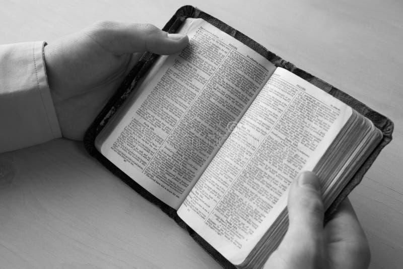 Ung manavläsningsbibel royaltyfri bild