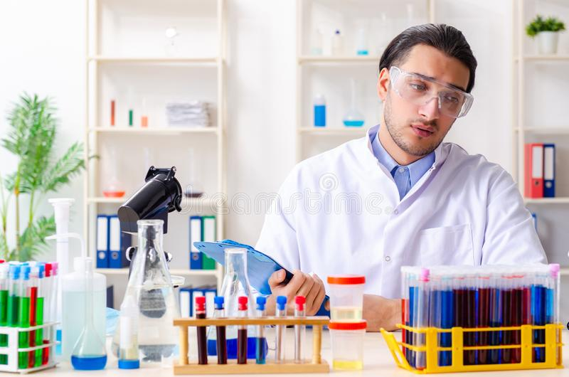 Ung manlig kemist som arbetar i labbet arkivbild