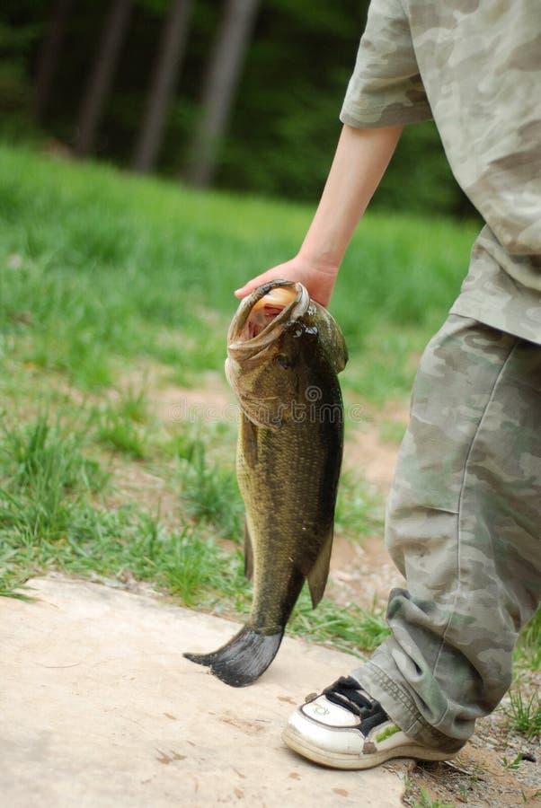 Ung pojke som bär den hem- fisken arkivbilder