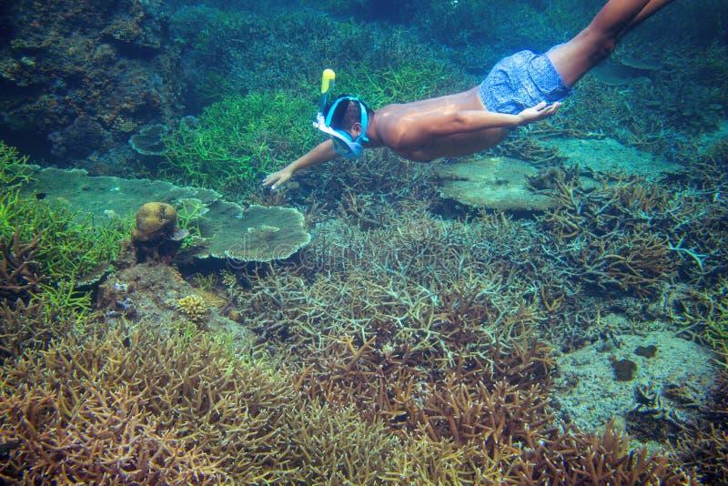 Ung pojkesnorkel i korallrev undervattens- mansimning tropisk snorkeling för hav Snorkla den undervattens- mannen royaltyfri foto