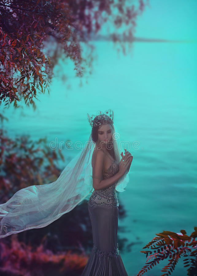 Ung prinsessa i en silverklänning arkivfoto