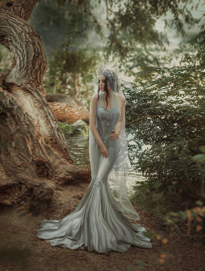 Ung prinsessa i en silverklänning royaltyfri fotografi